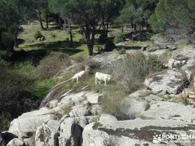 Valle de la Pizarra y los Brajales - Cebreros; viajes fin de año fines de semana